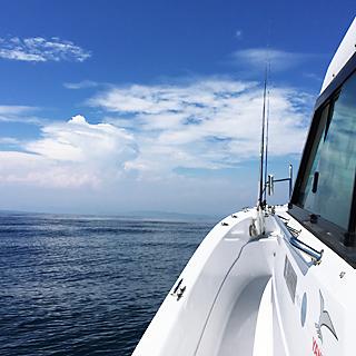 レンタル/免許/操船講習のイメージ